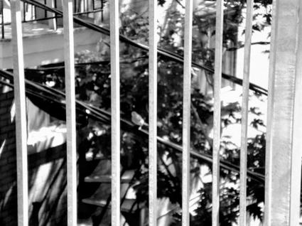 Blog Cage